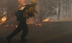 California ban bố tình trạng khẩn cấp vì cháy rừng