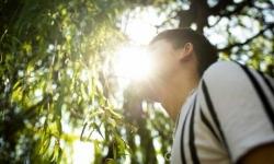 Thiếu niên Việt trồng cần sa ở Anh: