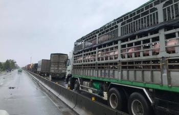 """Đường ngập sâu, cả ngàn chiếc xe tải """"chết đứng"""" trên Quốc lộ 1A"""