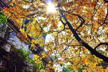 Thời tiết hôm nay 23/10: Bắc Bộ tăng nhiệt, Trung Bộ mưa dông