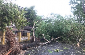 Bão số 9 đổ bộ đất liền với sức gió giật cấp 15, có thể phá sập nhà cấp 4