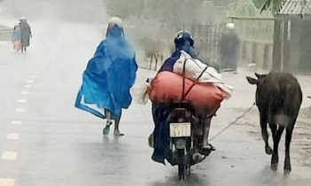 Lũ quét ào ạt đổ về sau mưa lớn, Hà Tĩnh khẩn cấp di dời dân