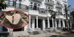Truy tìm thủ phạm chặt trộm hàng cây sấu trên vỉa hè Hà Nội