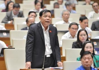 Bộ trưởng NN&PTNT: Nhìn Google, rừng Việt Nam ít hơn Campuchia, Lào là chính xác