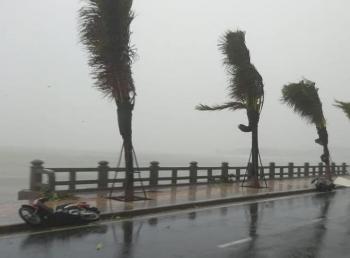 Bão số 12: Khánh Hòa, Phú Yên gió bão giật cấp 11, nhiều nơi mất điện