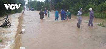 Ảnh: Bão số 12 đổ bộ vào Khánh Hòa, Phú Yên gây mưa lớn, nhiều cây xanh gãy đổ