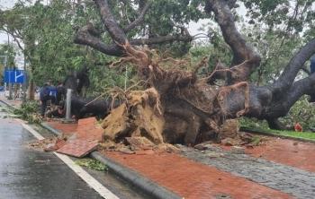 TRỰC TIẾP: Bão số 13 đổ bộ đất liền, Huế - Đà Nẵng mưa to gió giật, phố ngập úng