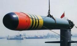 Các mẫu ngư lôi trang bị trên tàu ngầm Trung Quốc