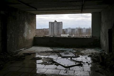 vung dat chet choc 33 nam sau tham hoa hat nhan chernobyl