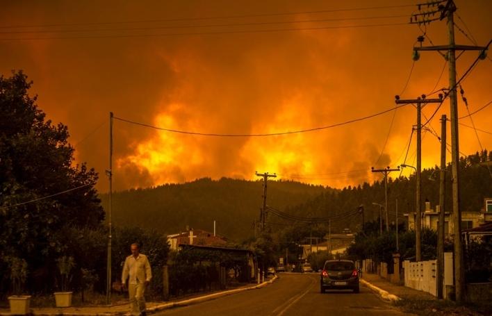 Nỗi tuyệt vọng của nông dân Hy Lạp khi cháy rừng thiêu sống đàn dê 372 con