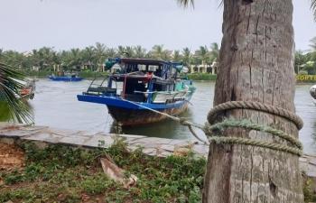 Bão số 5 đang áp sát đất liền, gần 3.000 ngư dân Quảng Nam còn ở ngoài khơi