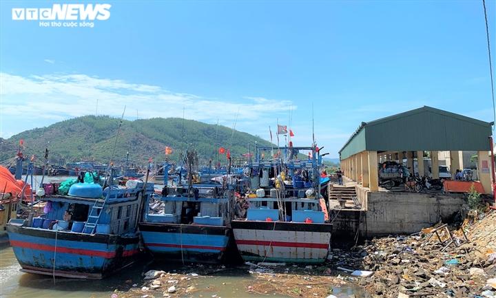 Ảnh: Cảng cá ở Quảng Ngãi đóng cửa, hàng trăm tấn hải sản ứ đọng - 7
