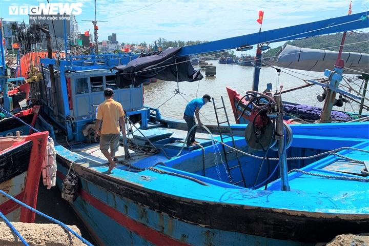 Ảnh: Cảng cá ở Quảng Ngãi đóng cửa, hàng trăm tấn hải sản ứ đọng - 6
