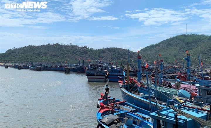 Ảnh: Cảng cá ở Quảng Ngãi đóng cửa, hàng trăm tấn hải sản ứ đọng - 4