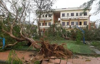 1,7 triệu hộ bị mất điện do bão Molave