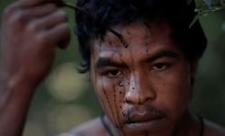 Tù trưởng gác rừng Amazon bị lâm tặc sát hại
