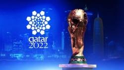 tuyen viet nam va world cup 2022 thay park noi cam sai