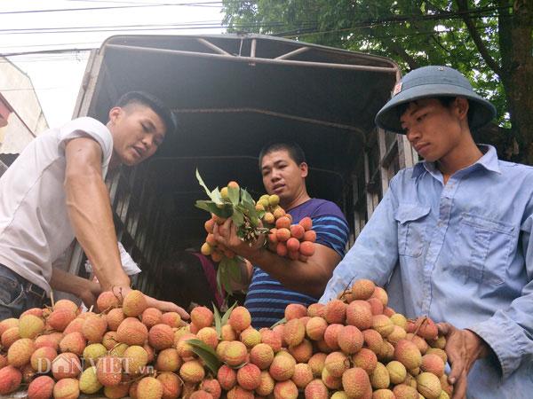 390 thuong nhan trung quoc do bo vung vai thieu luc ngan mua gia cao