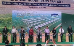 ty phu thai co the thau tom vinamilk