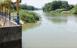 Nước sông Cầu Đỏ nhiễm mặn: Dawaco báo cáo khẩn