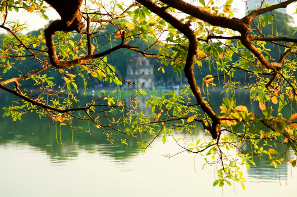 du bao thoi tiet hom nay 152 bac bo nang am co noi tren 32 do c