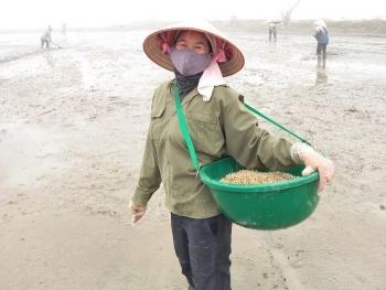 Tình làng, nghĩa xóm trong tâm dịch Chí Linh