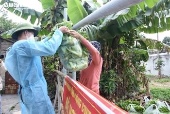 """Nông sản Hải Dương chờ """"giải cứu"""": Khó khăn chồng khó khăn"""