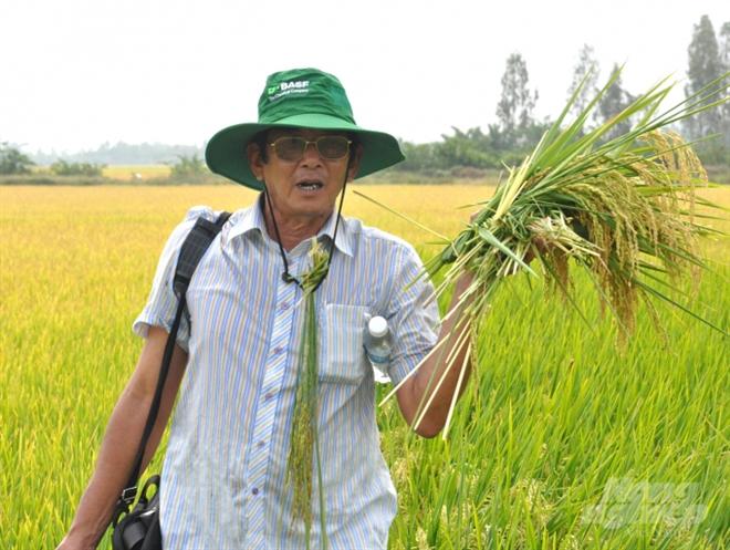 """""""Cha đẻ"""" gạo ST25 Hồ Quang Cua: Gạo được đăng ký thương hiệu ở Mỹ là điều tốt"""