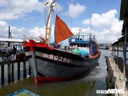 Bị tấn công, cướp cạn 'mồ hôi nước mắt', ngư dân Quảng Nam vẫn kiên cường bám đảo Hoàng Sa