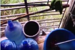 Nước đóng bình lấy từ mương nước thải từng được cung cấp cho học sinh tiểu học