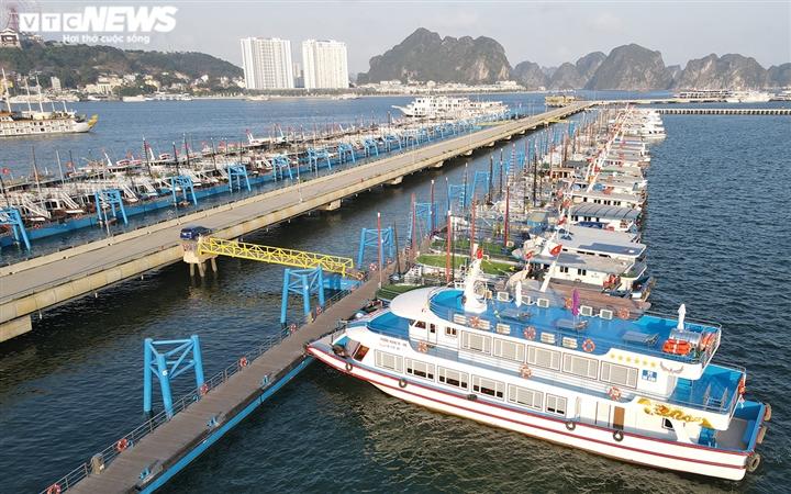 """500 tàu du lịch Hạ Long nằm """"chờ chết"""", bán không ai mua"""