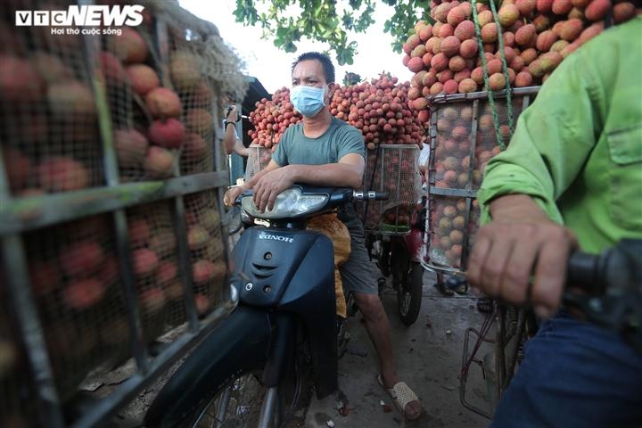 Ảnh: Ấn tượng hàng dài xe chở vải nối đuôi nhau đến điểm thu mua ở Bắc Giang - 7