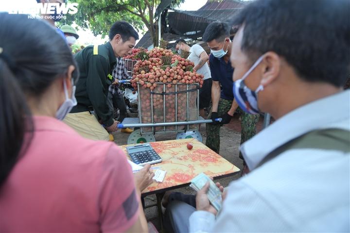 Ảnh: Ấn tượng hàng dài xe chở vải nối đuôi nhau đến điểm thu mua ở Bắc Giang - 10