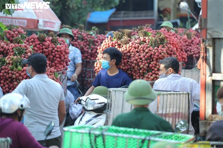 Ảnh: Ấn tượng hàng dài xe chở vải nối đuôi nhau đến điểm thu mua ở Bắc Giang - 6