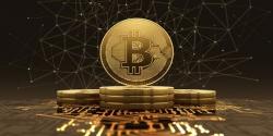 tang gia nhe bitcoin van am dam