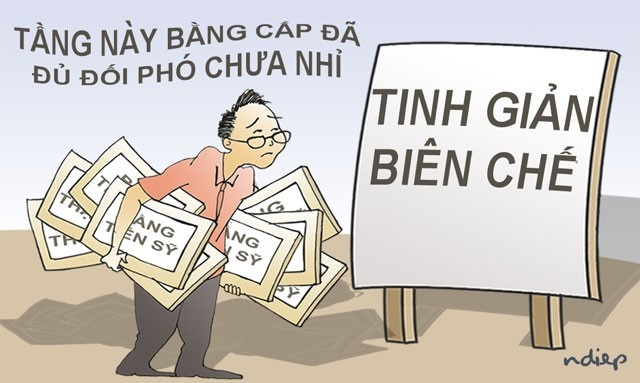 ung de co cau can nguoi tai