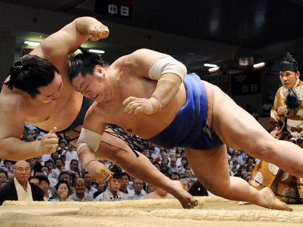 vi sao vo si sumo nhat ban co the nang den 400kg