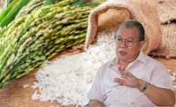 Gạo Việt ngon nhưng giá