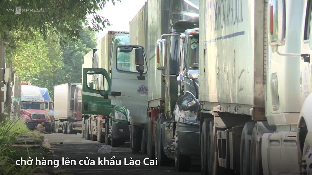 Container thanh long xếp hàng dài vì Trung Quốc thay đổi kiểm soát hàng