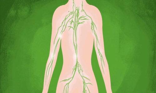 Tiến trình tế bào ung thư di căn trong cơ thể